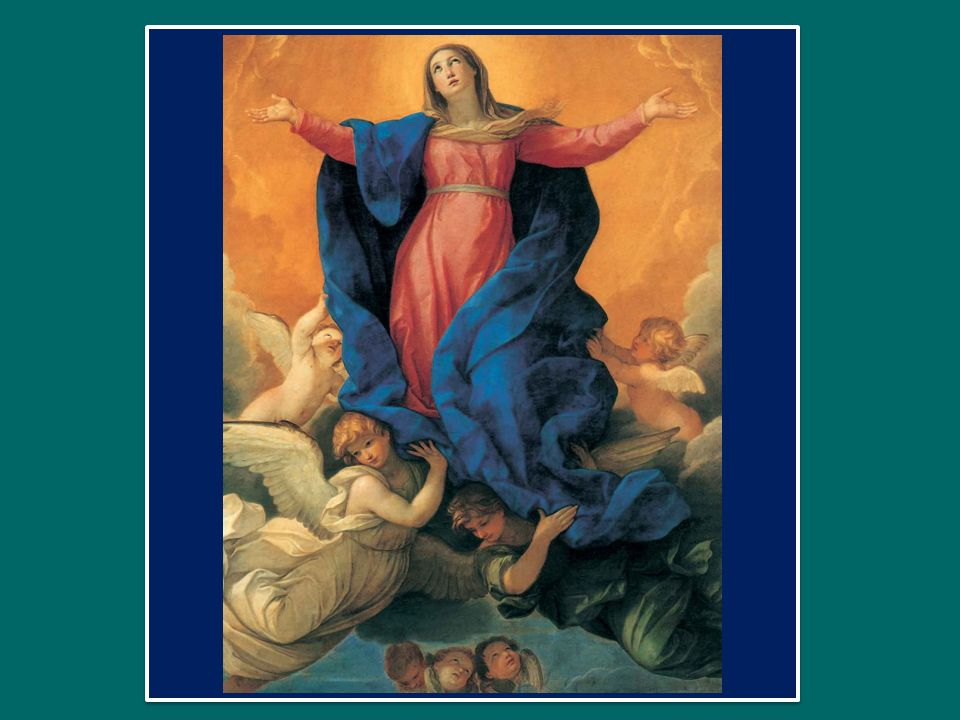 Cantáte Dómino cánticum novum: Cantate al Signore un canto nuovo, quóniam mirabília fecit. perché ha operato meraviglie.
