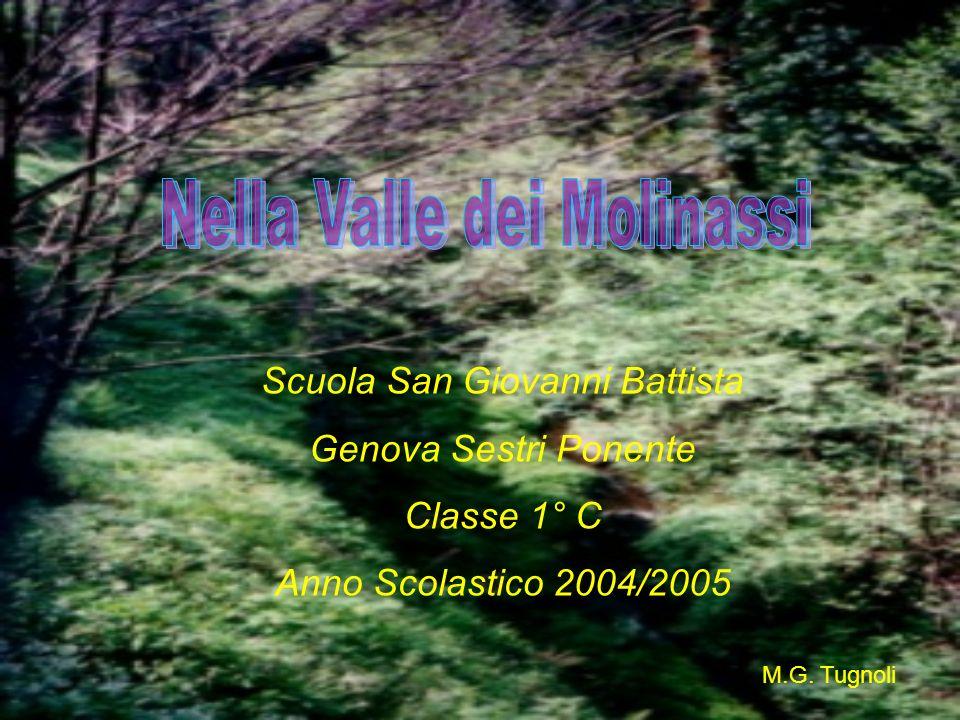 M.G. Tugnoli Scuola San Giovanni Battista Genova Sestri Ponente Classe 1° C Anno Scolastico 2004/2005