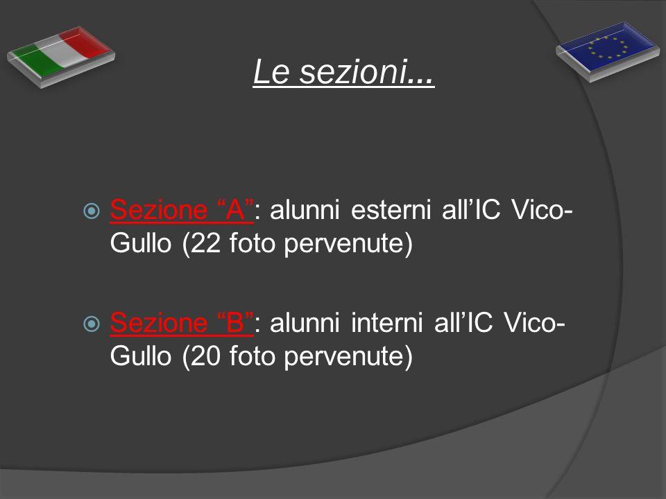 Le sezioni… Sezione A: alunni esterni allIC Vico- Gullo (22 foto pervenute) Sezione B: alunni interni allIC Vico- Gullo (20 foto pervenute)