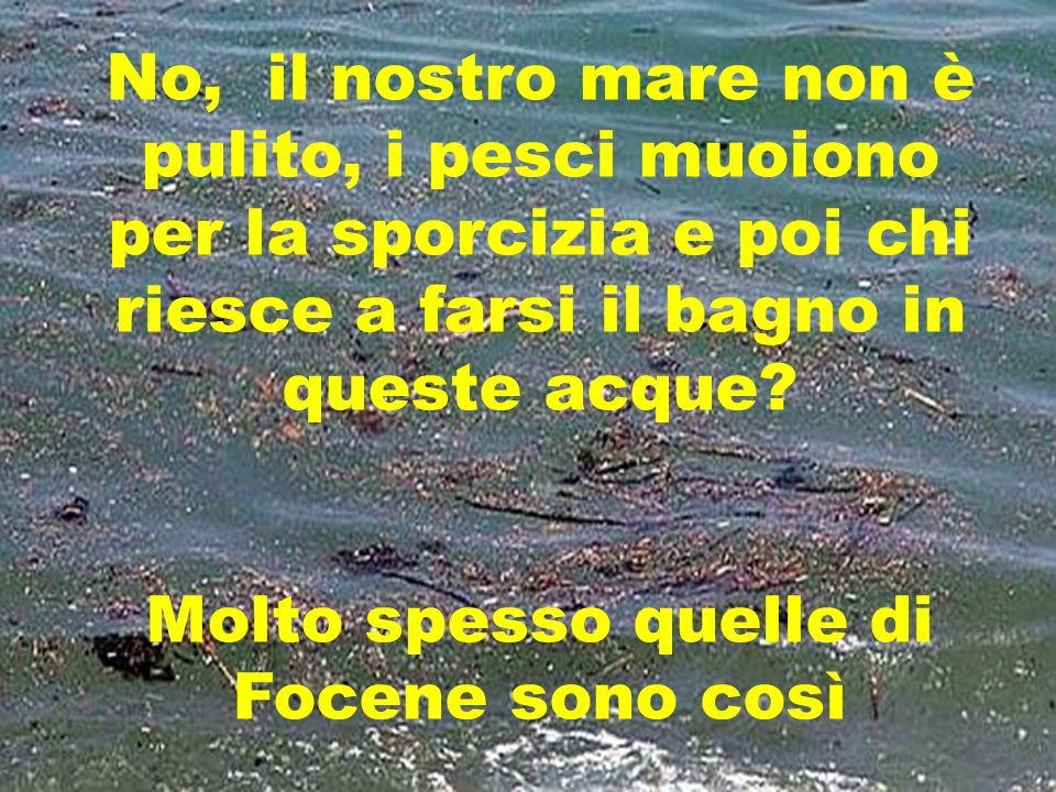 No, il nostro mare non è pulito, i pesci muoiono per la sporcizia e poi chi riesce a farsi il bagno in queste acque.