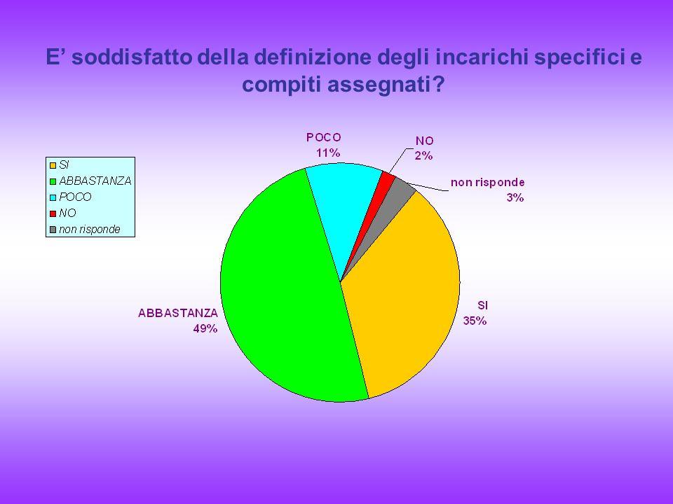 E soddisfatto della definizione degli incarichi specifici e compiti assegnati?