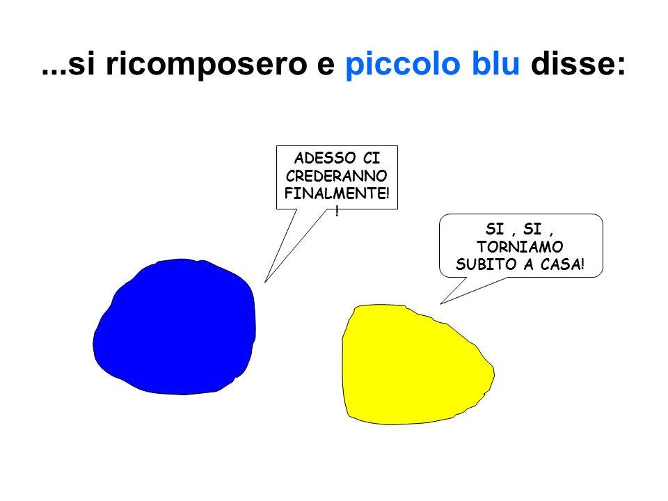 Piccolo blu e piccolo giallo si disperarono e piansero tante lacrime gialle e blu finchè…