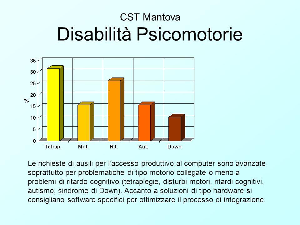 CST Mantova Disabilità Psicomotorie Le richieste di ausili per laccesso produttivo al computer sono avanzate soprattutto per problematiche di tipo mot
