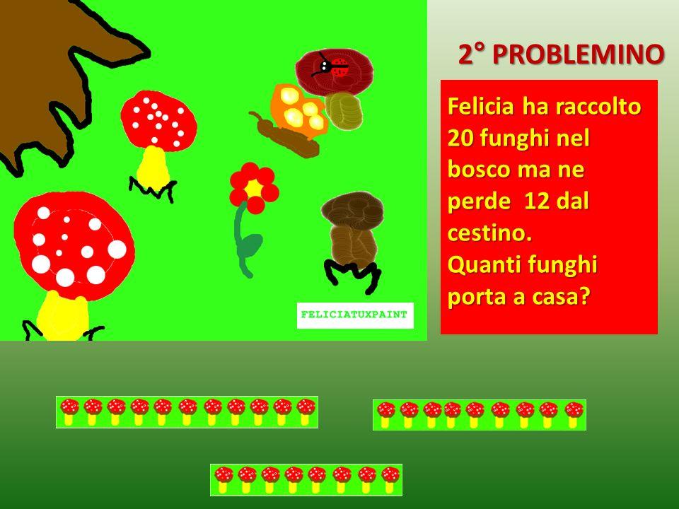 Felicia ha raccolto 20 funghi nel bosco ma ne perde 12 dal cestino. Quanti funghi porta a casa? 2° PROBLEMINO
