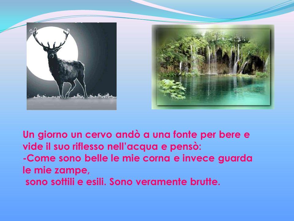 Un giorno un cervo andò a una fonte per bere e vide il suo riflesso nellacqua e pensò: -Come sono belle le mie corna e invece guarda le mie zampe, sono sottili e esili.