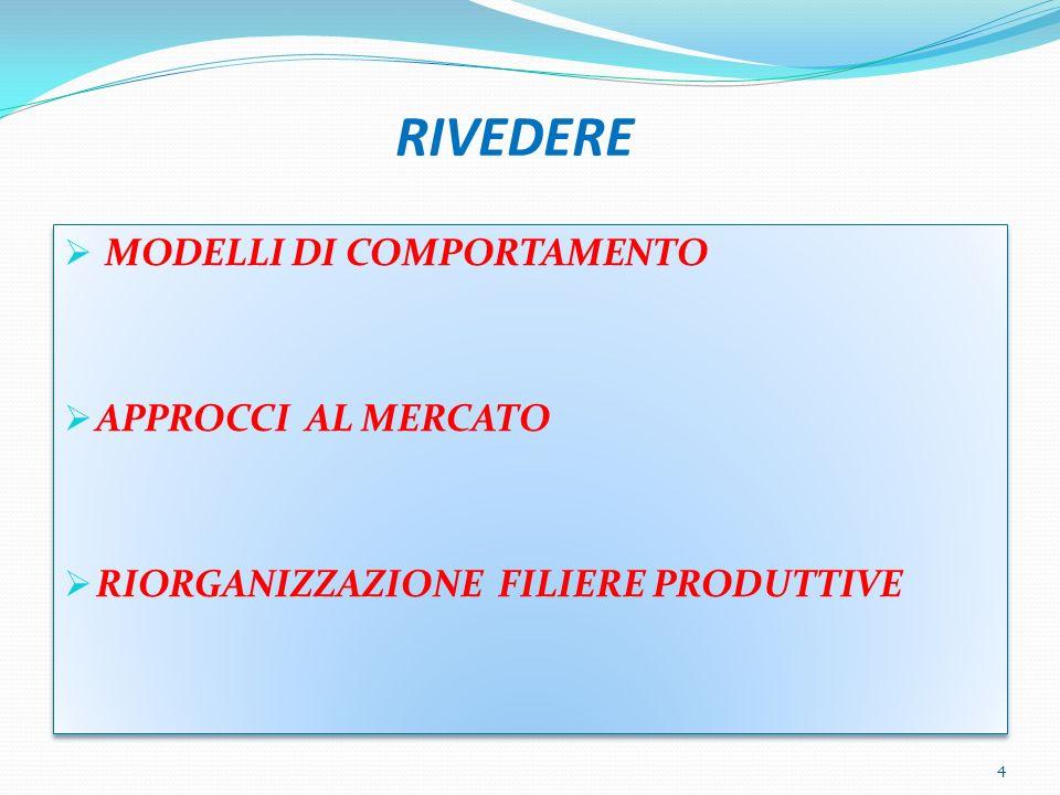 RIVEDERE MODELLI DI COMPORTAMENTO APPROCCI AL MERCATO RIORGANIZZAZIONE FILIERE PRODUTTIVE MODELLI DI COMPORTAMENTO APPROCCI AL MERCATO RIORGANIZZAZIONE FILIERE PRODUTTIVE 4