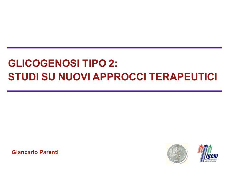 GLICOGENOSI TIPO 2: STUDI SU NUOVI APPROCCI TERAPEUTICI Giancarlo Parenti