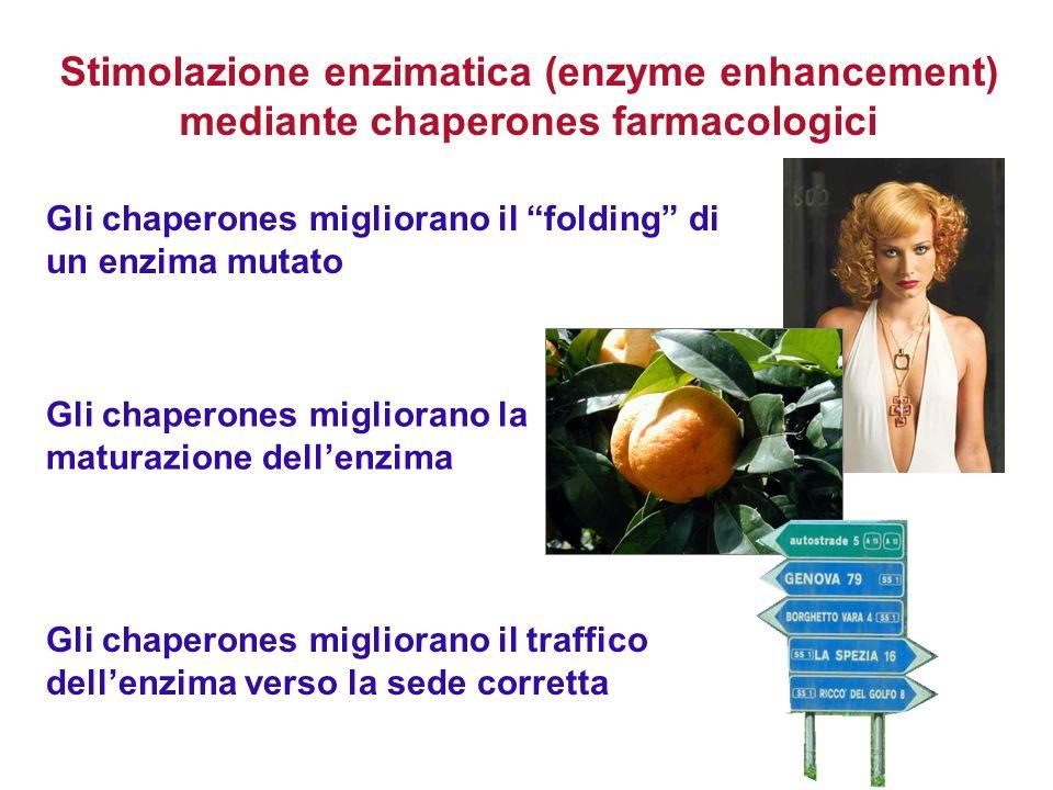 Stimolazione enzimatica (enzyme enhancement) mediante chaperones farmacologici Gli chaperones migliorano il folding di un enzima mutato Gli chaperones