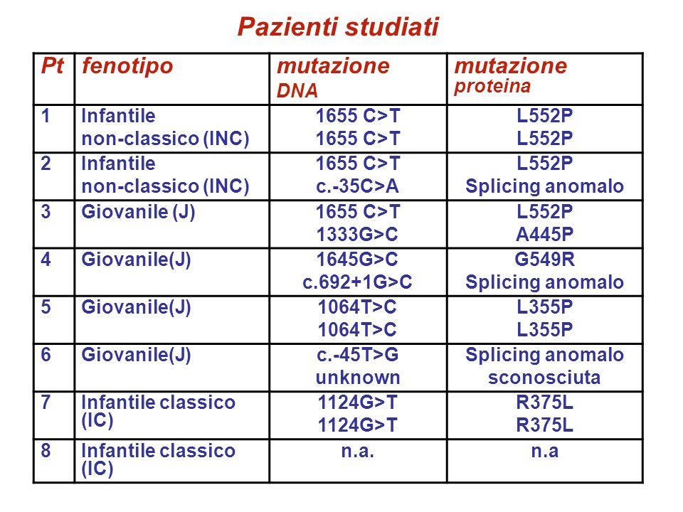 Pazienti studiati Ptfenotipomutazione DNA mutazione proteina 1Infantile non-classico (INC) 1655 C>T L552P 2Infantile non-classico (INC) 1655 C>T c.-35