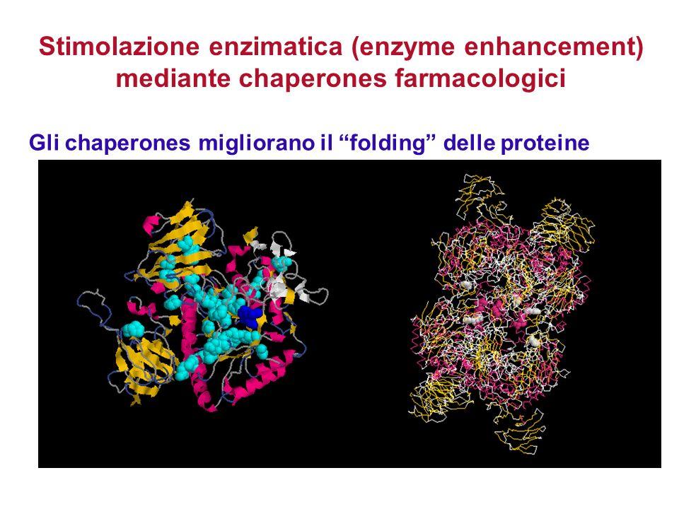 Gli chaperones migliorano il folding delle proteine Stimolazione enzimatica (enzyme enhancement) mediante chaperones farmacologici