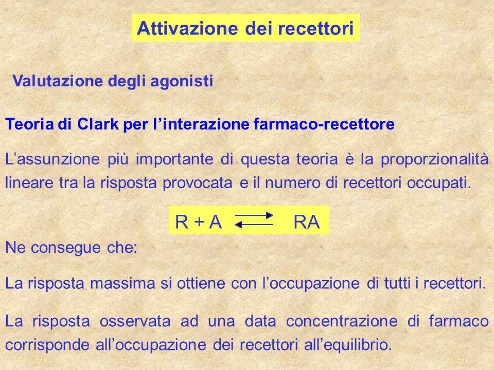 Attivazione dei recettori Valutazione degli agonisti Teoria di Clark per linterazione farmaco-recettore Lassunzione più importante di questa teoria è
