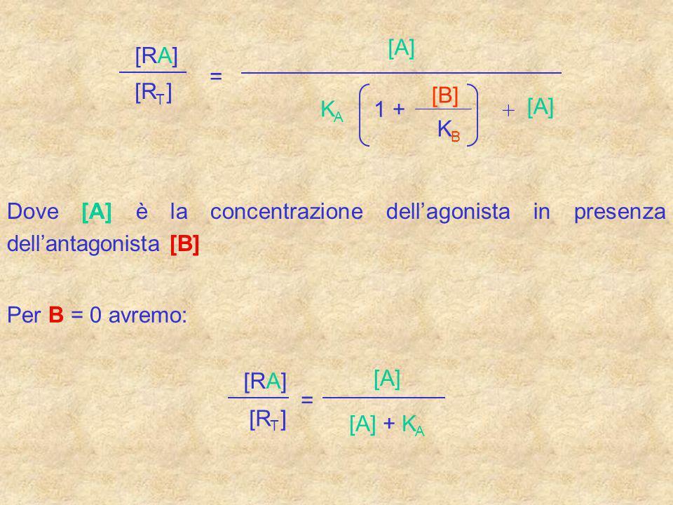 [R T ] [RA] = [A] K A 1 + [B] K B + [A] Dove [A] è la concentrazione dellagonista in presenza dellantagonista [B] Per B = 0 avremo: [RA] [R T ] = [A]