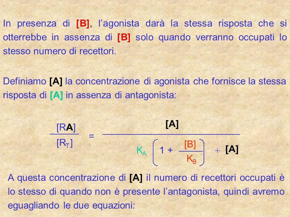 In presenza di [B], lagonista darà la stessa risposta che si otterrebbe in assenza di [B] solo quando verranno occupati lo stesso numero di recettori.
