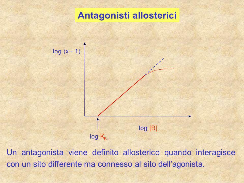 Antagonisti allosterici log (x - 1) log [B] log K B Un antagonista viene definito allosterico quando interagisce con un sito differente ma connesso al