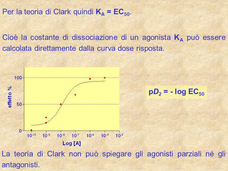 Per la teoria di Clark quindi K A = EC 50. Cioè la costante di dissociazione di un agonista K A può essere calcolata direttamente dalla curva dose ris