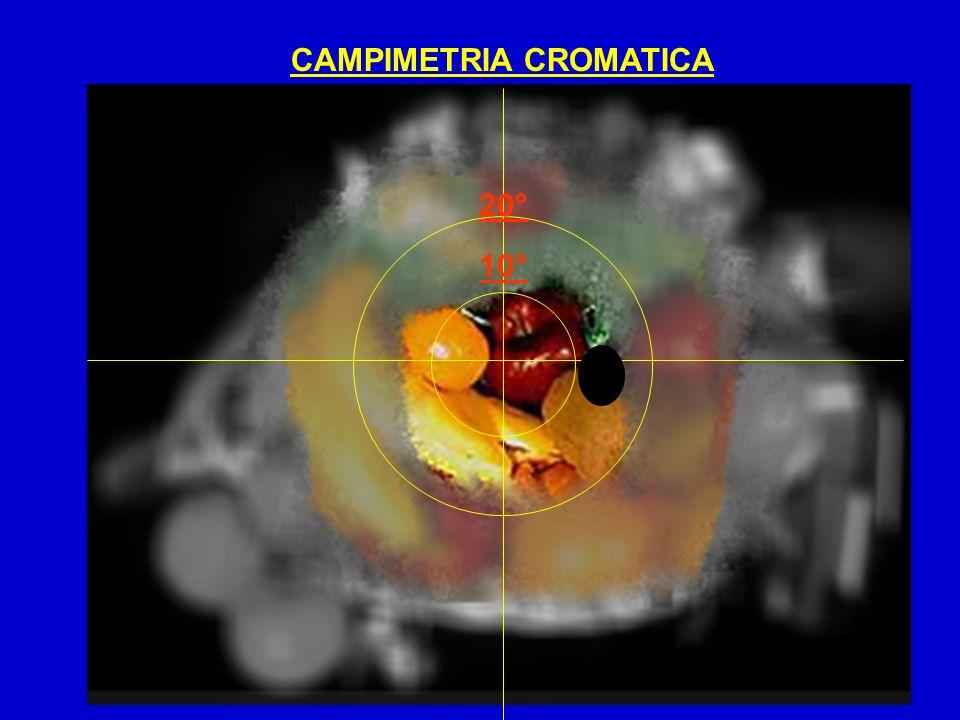 CAMPIMETRIA CROMATICA 10° 20°