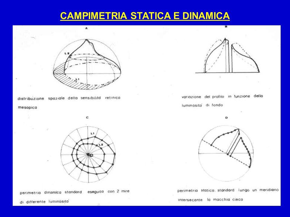 CAMPIMETRIA STATICA E DINAMICA