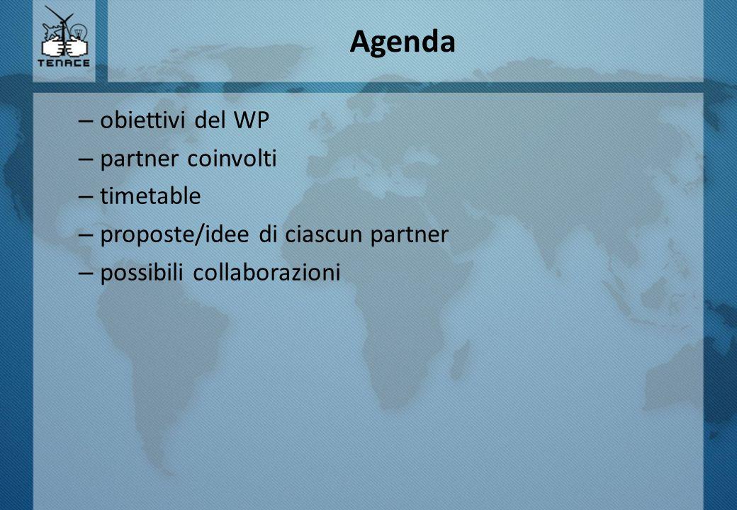 Agenda – obiettivi del WP – partner coinvolti – timetable – proposte/idee di ciascun partner – possibili collaborazioni