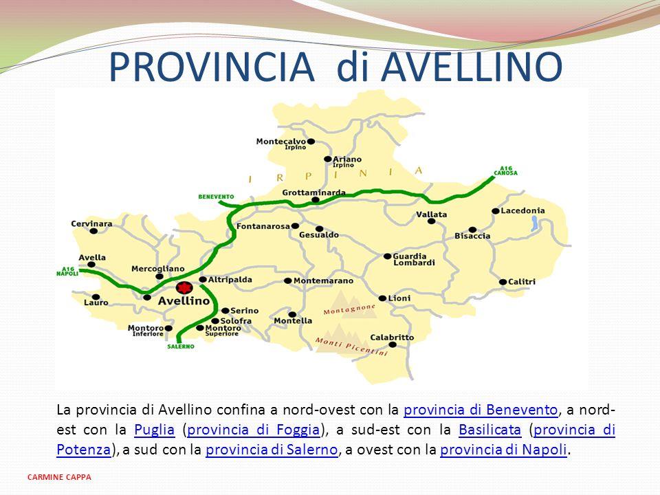PROVINCIA di AVELLINO CARMINE CAPPA La provincia di Avellino confina a nord-ovest con la provincia di Benevento, a nord- est con la Puglia (provincia