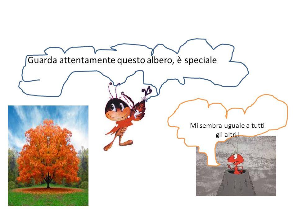 è un albero speciale, un albero magico, le sue foglie sono magiche Che bello, che magie fanno?