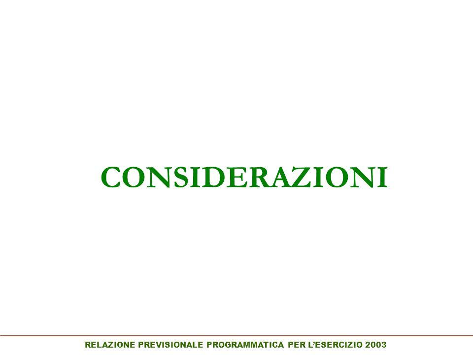 RELAZIONE PREVISIONALE PROGRAMMATICA PER LESERCIZIO 2003 CONSIDERAZIONI