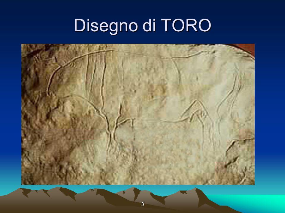 3 Disegno di TORO