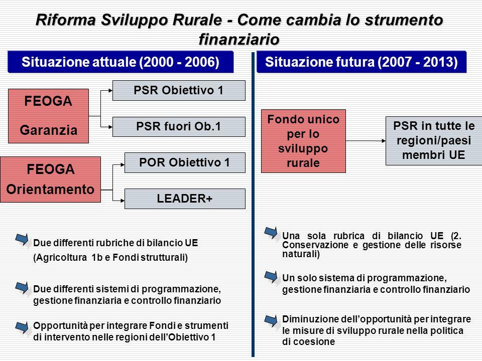 Situazione attuale (2000 - 2006)Situazione futura (2007 - 2013) FEOGA Garanzia PSR Obiettivo 1 PSR fuori Ob.1 Fondo unico per lo sviluppo rurale PSR in tutte le regioni/paesi membri UE Due differenti rubriche di bilancio UE (Agricoltura 1b e Fondi strutturali) Due differenti sistemi di programmazione, gestione finanziaria e controllo finanziario Opportunità per integrare Fondi e strumenti di intervento nelle regioni dellObiettivo 1 Una sola rubrica di bilancio UE (2.