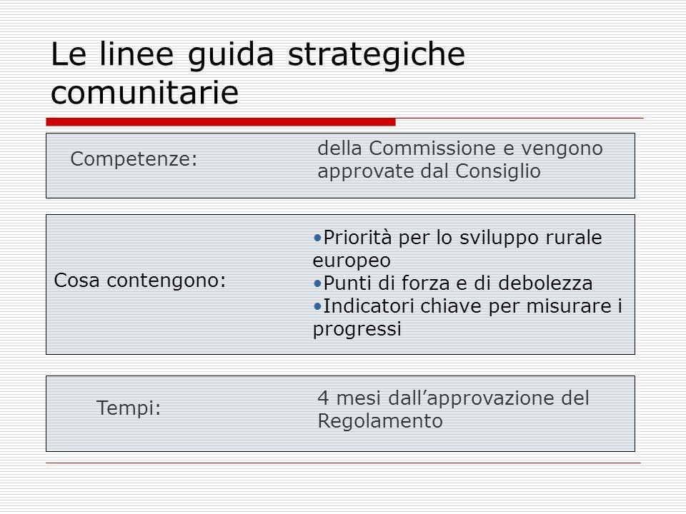 Le linee guida strategiche comunitarie Competenze: della Commissione e vengono approvate dal Consiglio Cosa contengono: Priorità per lo sviluppo rurale europeo Punti di forza e di debolezza Indicatori chiave per misurare i progressi Tempi: 4 mesi dallapprovazione del Regolamento