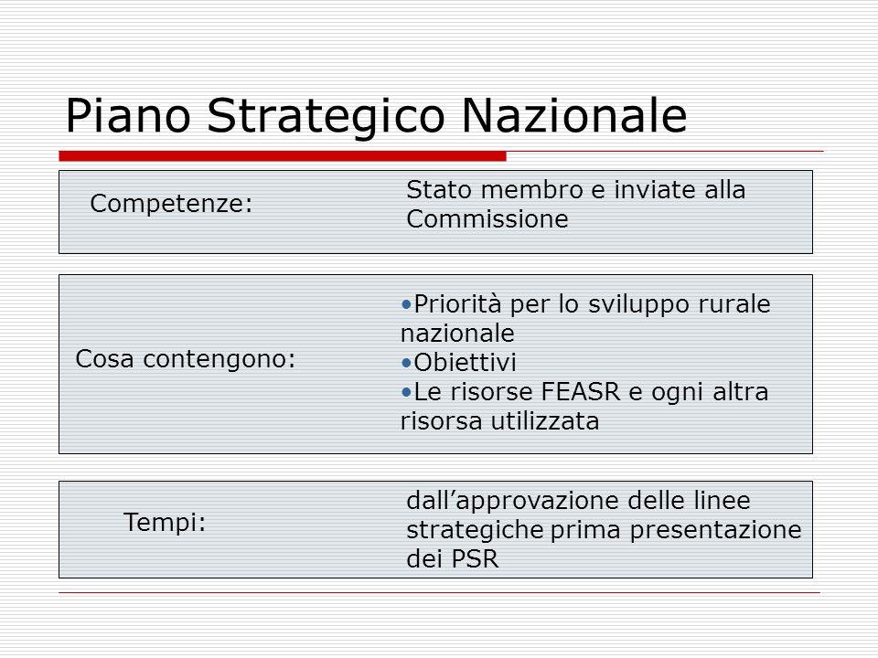 Piano Strategico Nazionale Competenze: Stato membro e inviate alla Commissione Cosa contengono: Priorità per lo sviluppo rurale nazionale Obiettivi Le
