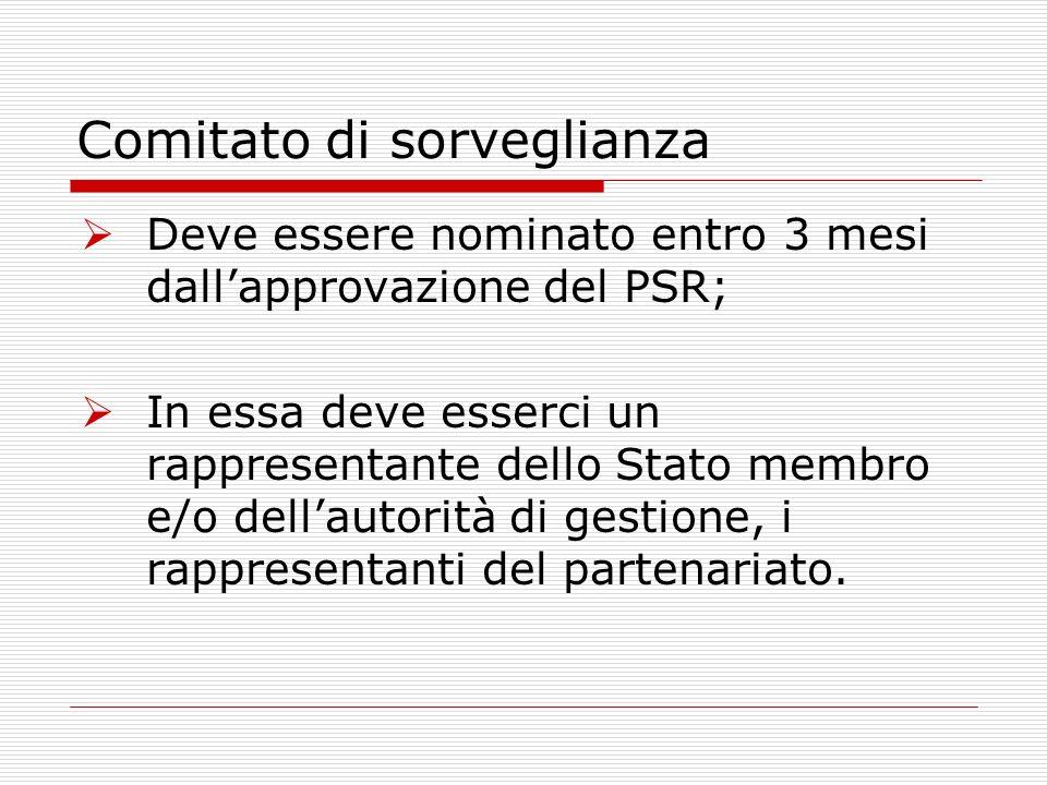 Comitato di sorveglianza Deve essere nominato entro 3 mesi dallapprovazione del PSR; In essa deve esserci un rappresentante dello Stato membro e/o dellautorità di gestione, i rappresentanti del partenariato.