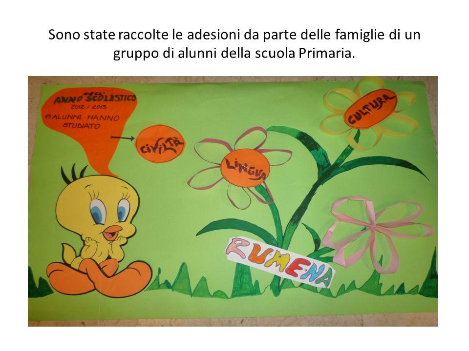 Sono state raccolte le adesioni da parte delle famiglie di un gruppo di alunni della scuola Primaria.