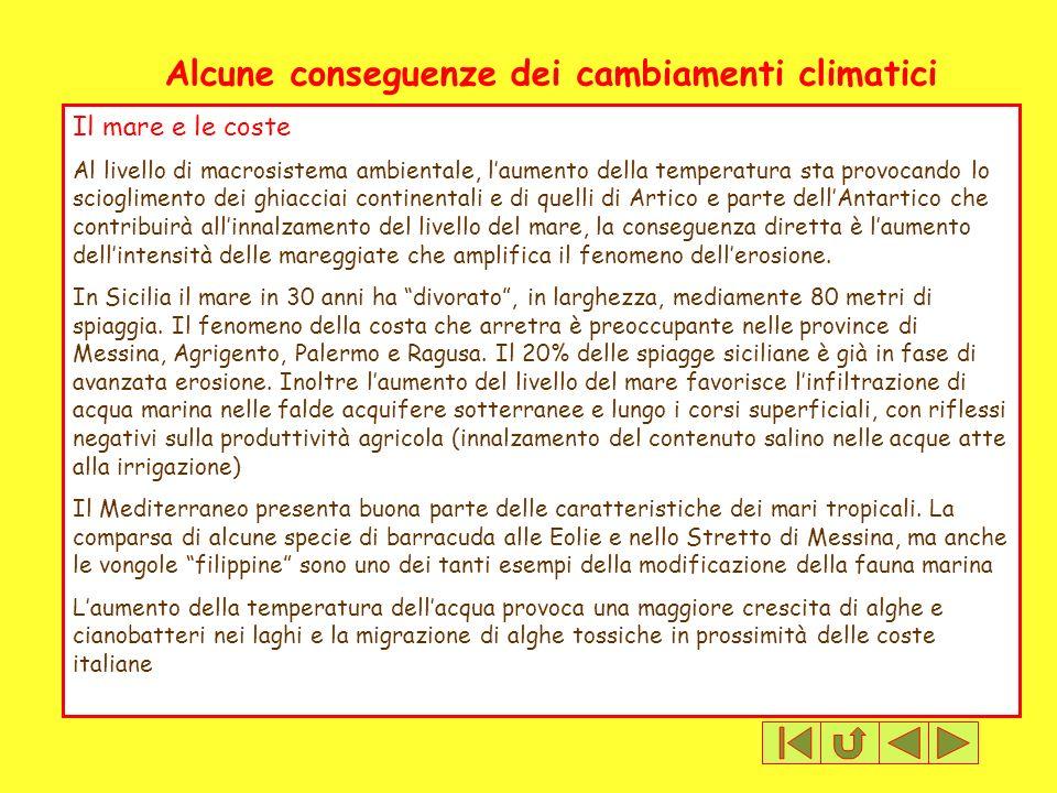 Alcune conseguenze dei cambiamenti climatici Il mare e le coste Al livello di macrosistema ambientale, laumento della temperatura sta provocando lo sc