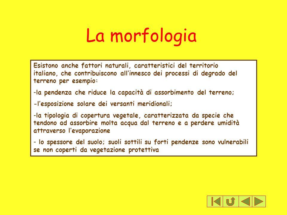 La morfologia Esistono anche fattori naturali, caratteristici del territorio italiano, che contribuiscono allinnesco dei processi di degrado del terre