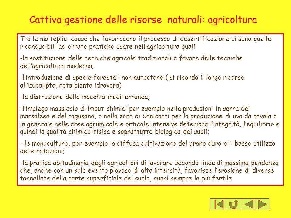 Cattiva gestione delle risorse naturali: agricoltura Tra le molteplici cause che favoriscono il processo di desertificazione ci sono quelle riconducib
