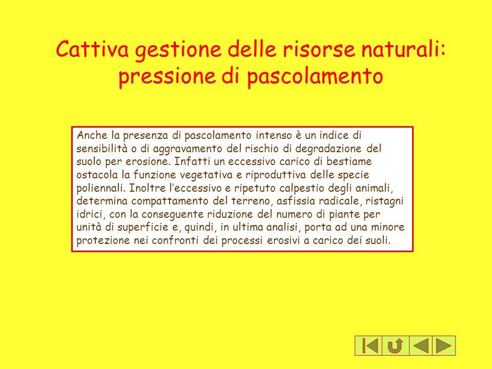 Cattiva gestione delle risorse naturali: pressione di pascolamento Anche la presenza di pascolamento intenso è un indice di sensibilità o di aggravame