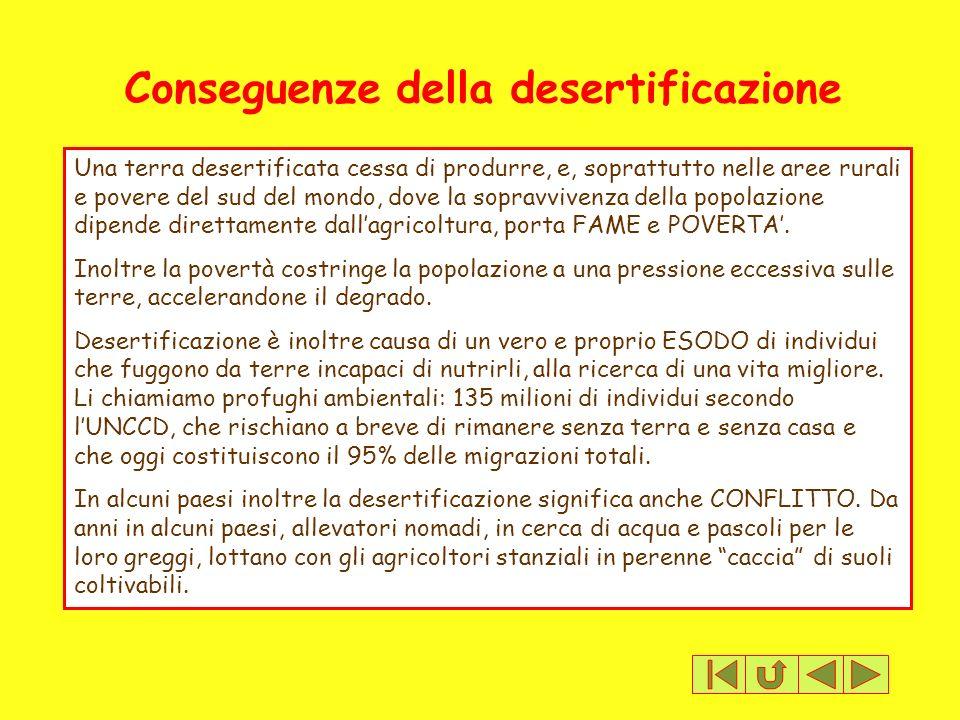 Conseguenze della desertificazione Una terra desertificata cessa di produrre, e, soprattutto nelle aree rurali e povere del sud del mondo, dove la sop
