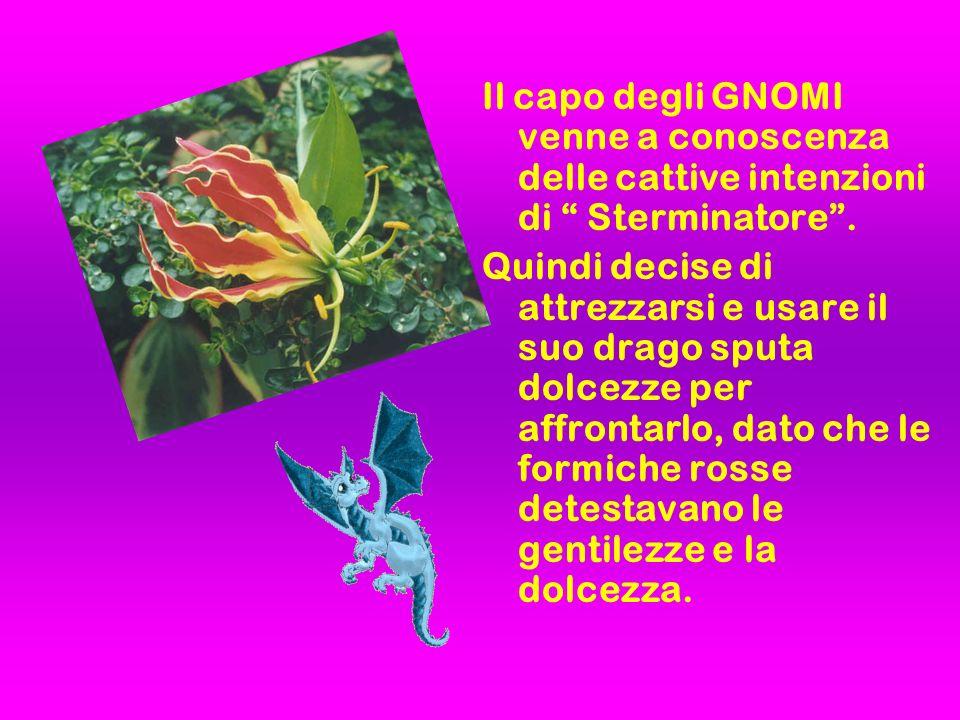 Gli GNOMI e le FORMICHE ROSSE si incontrarono nel punto stabilito e il drago cominciò a far piovere dolcezze sulle formiche rosse.