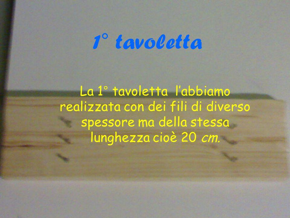 1° tavoletta La 1° tavoletta labbiamo realizzata con dei fili di diverso spessore ma della stessa lunghezza cioè 20 cm.