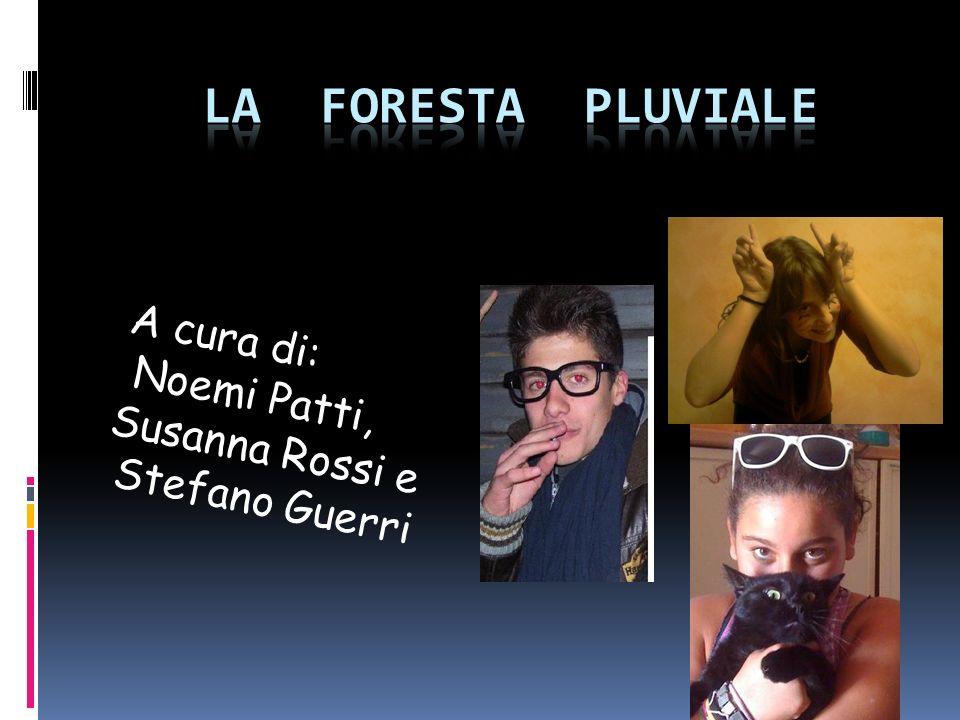 A cura di: Noemi Patti, Susanna Rossi e Stefano Guerri