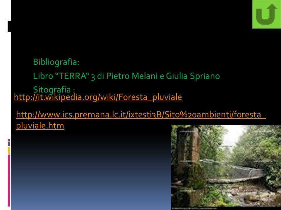 Bibliografia: Libro TERRA 3 di Pietro Melani e Giulia Spriano Sitografia : http://it.wikipedia.org/wiki/Foresta_pluviale http://www.ics.premana.lc.it/