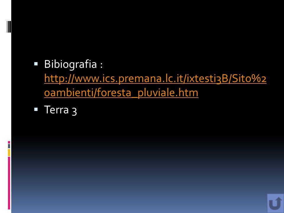 Bibiografia : http://www.ics.premana.lc.it/ixtesti3B/Sito%2 0ambienti/foresta_pluviale.htm http://www.ics.premana.lc.it/ixtesti3B/Sito%2 0ambienti/for