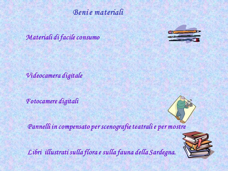 Beni e materiali Materiali di facile consumo Videocamera digitale Fotocamere digitali Pannelli in compensato per scenografie teatrali e per mostre Lib