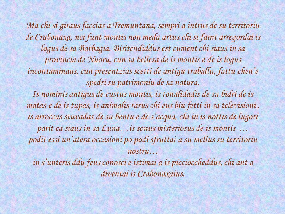 Ma chi si giraus faccias a Tremuntana, sempri a intrus de su territoriu de Crabonaxa, nci funt montis non meda artus chi si faint arregordai is logus