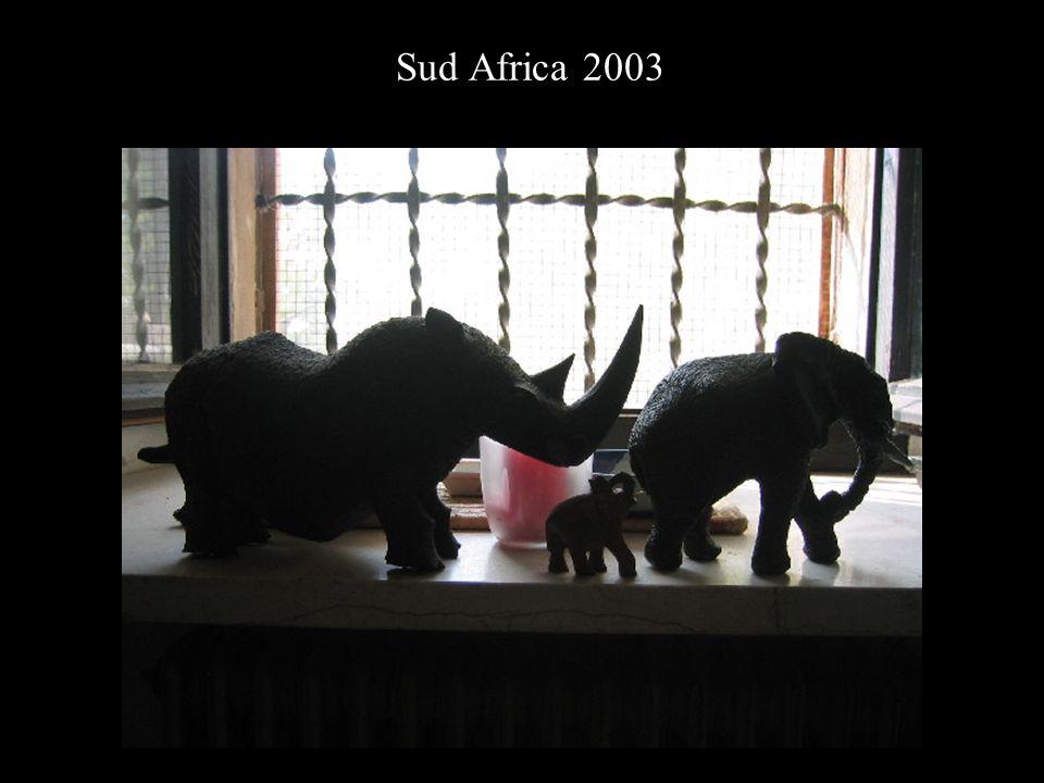 Sud Africa 2003