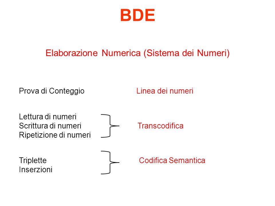 BDE Elaborazione Numerica (Sistema dei Numeri) Prova di Conteggio Linea dei numeri Lettura di numeri Scrittura di numeri Transcodifica Ripetizione di numeri Triplette Codifica Semantica Inserzioni