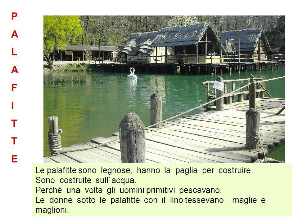 Le palafitte sono legnose, hanno la paglia per costruire. Sono costruite sull acqua. Perché una volta gli uomini primitivi pescavano. Le donne sotto l