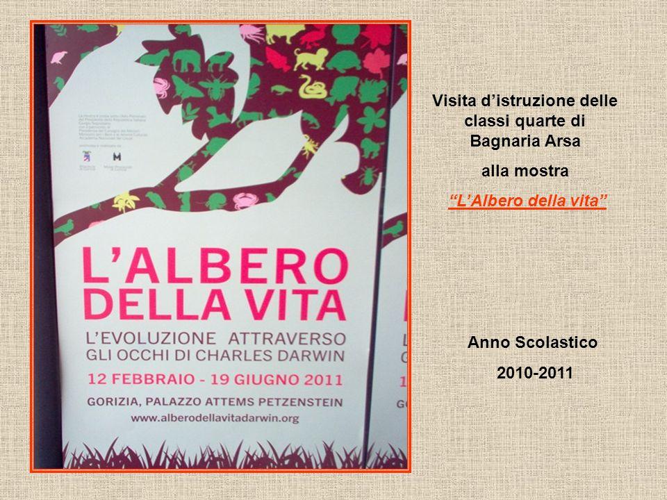 Visita distruzione delle classi quarte di Bagnaria Arsa alla mostra LAlbero della vita Anno Scolastico 2010-2011