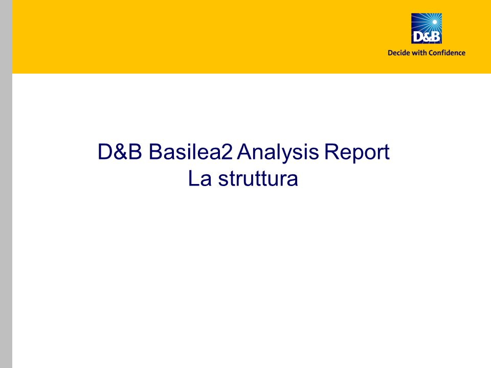 D&B Basilea2 Analysis Report La struttura