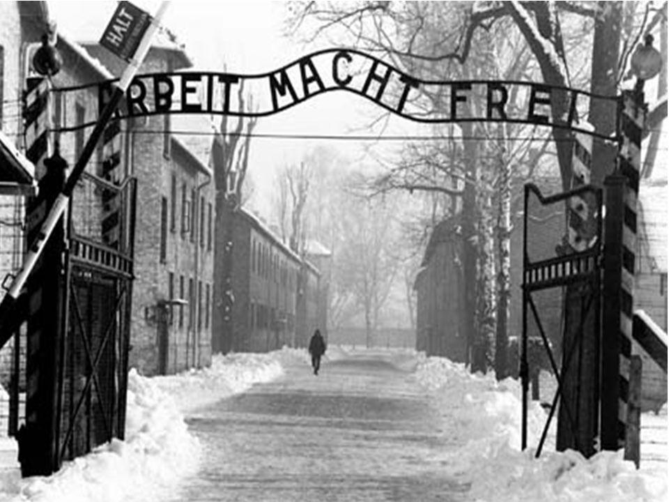 Venivano costretti a lavori forzati…..