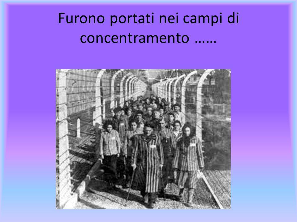 ………Pian piano gli ebrei furono esclusi dalla società.Hitler proibì i matrimoni misti tra Ebrei e tedeschi e furono espropriati dei loro beni e fatti o